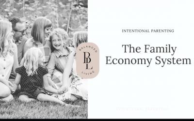 The Family Economy System